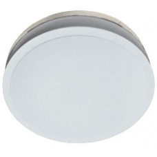 BATHROOM CEILING LIGHT OPAL 290MM
